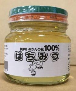 画像1: 二宮養蜂園 みかんの花はちみつ 300g (1)